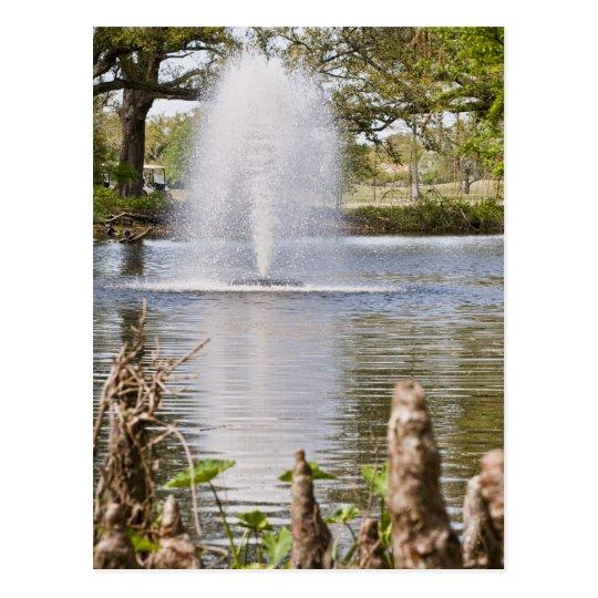 Audubon Park Postcard