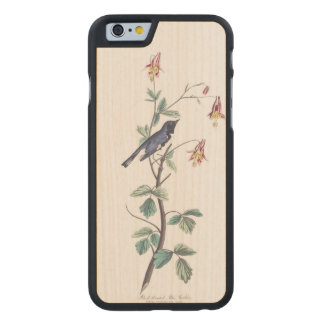 Audubon Plate 155 Black-Throated Blue Warbler Carved Maple iPhone 6 Case