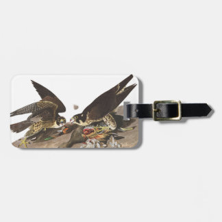 Audubon Plate 16 Great-footed Hawk Tag For Luggage