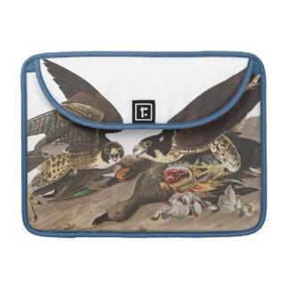Audubon Plate 16 Great-footed Hawk MacBook Pro Sleeve