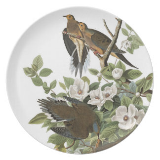 Audubon Plate 17 Carolina Pigeon