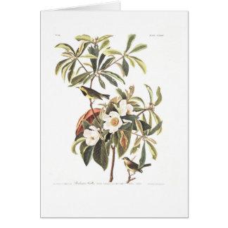 Audubon Plate 185 Bachman's Warbler Greeting Card
