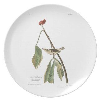 Audubon Plate 19 Louisiana Water Thrush