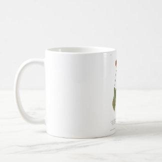 Audubon Plate 19 Louisiana Water Thrush Coffee Mug