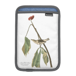 Audubon Plate 19 Louisiana Water Thrush iPad Mini Sleeve