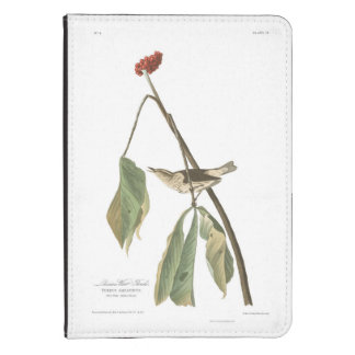 Audubon Plate 19 Louisiana Water Thrush Kindle 4 Cover