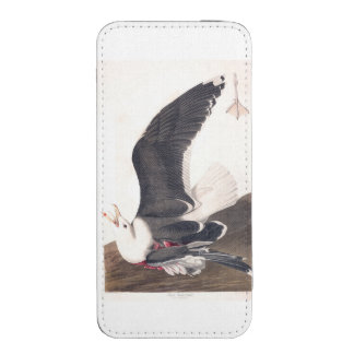 Audubon Plate 241 Black Backed Gull iPhone SE/5/5s/5c Pouch