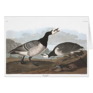 Audubon Plate 296 Barnacle Goose Card
