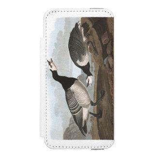 Audubon Plate 296 Barnacle Goose iPhone SE/5/5s Wallet Case