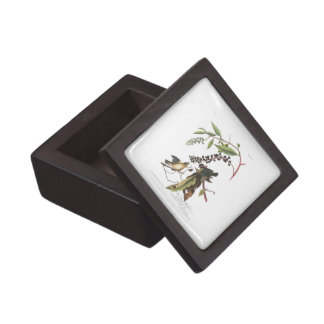 Audubon Plate 34 Worm eating Warbler Gift Box