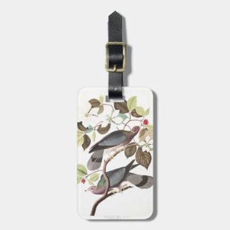 Audubon Plate 367 Band-tailed Pigeon Luggage Tag