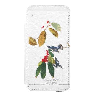 Audubon Plate 48 Azure Cerulean Warbler Wallet Case For iPhone SE/5/5s