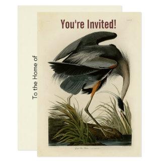 Audubon Print Blue Heron Birds Custom Invitation
