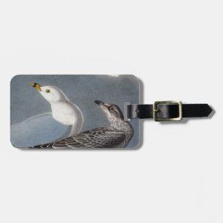 Audubon: Ring-Billed Gull Luggage Tag
