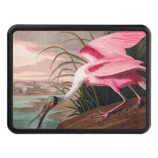 Audubon Roseate Spoonbill Bird Vintage Print Hitch Covers