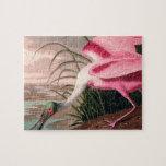 Audubon Roseate Spoonbill Bird Vintage Print Puzzles