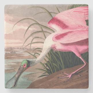 Audubon Roseate Spoonbill Bird Vintage Print Stone Coaster