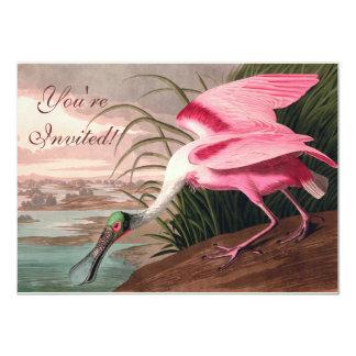 Audubon Roseate Spoonbill Invitations