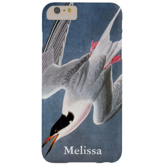 Audubon: Roseate Tern Barely There iPhone 6 Plus Case