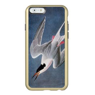 Audubon: Roseate Tern Incipio Feather Shine iPhone 6 Case