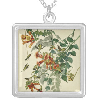 Audubon Ruby Throated Hummingbird Silver Plated Necklace