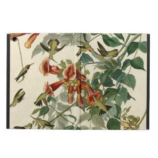 Audubon Ruby Throated Hummingbirds iPad Air Covers