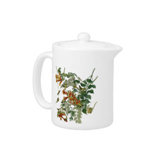 Audubon Ruby Throated Hummingbirds Teapot