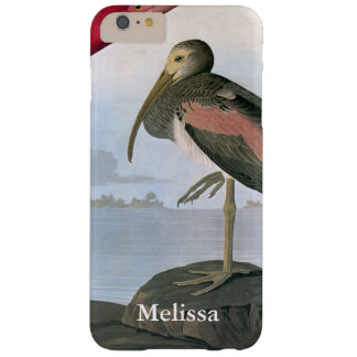 Audubon: Scarlet Ibis Barely There iPhone 6 Plus Case