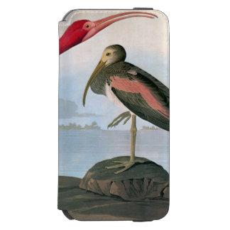 Audubon: Scarlet Ibis iPhone 6/6s Wallet Case