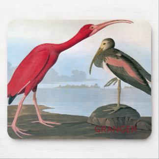 Audubon Scarlet Ibis Mouse Pad