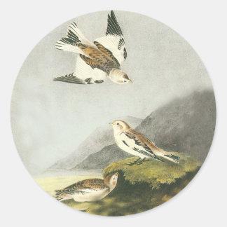 Audubon Snow Bunting Bird Art Stickers