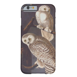 Audubon Snowy Owl Pair on a Cloudy Night Barely There iPhone 6 Case