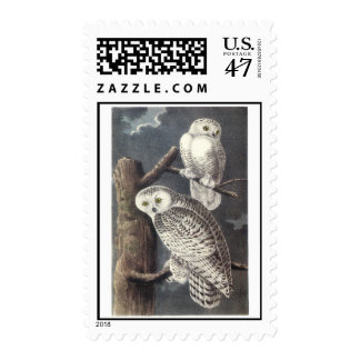 Audubon Snowy Owl Postage