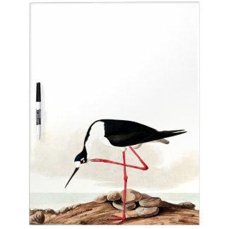 Audubon Stilt Bird Wildlife Animal Dry Erase Board