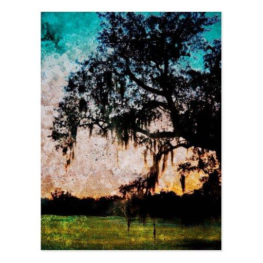 Audubon Sunset Textures Postcards