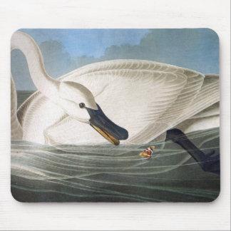 Audubon Swan Mousepad