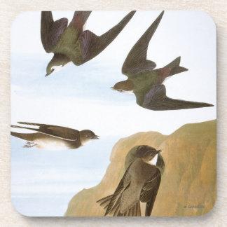 Audubon: Tragos Posavaso