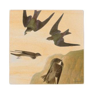 Audubon: Tragos Posavasos De Madera