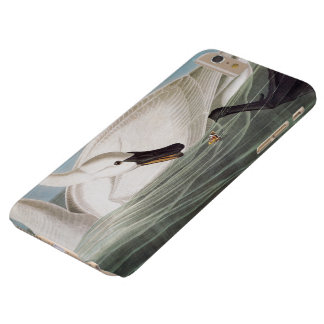 Audubon: Trumpeter Swan Barely There iPhone 6 Plus Case