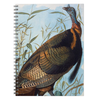 Audubon: Turquía salvaje Libros De Apuntes Con Espiral