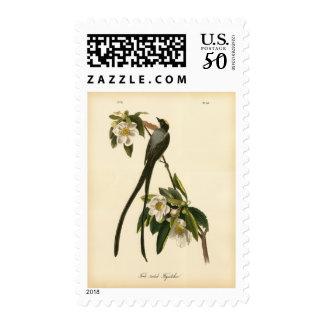 Audubon Vintage Floral Bird Fork-tailed Flycatcher Postage