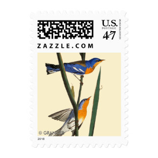 Audubon: Warbler Postage
