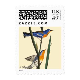 Audubon: Warbler Postage Stamp