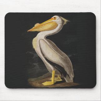Audubon White Pelican Bird Vintage Print Mouse Pad