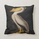 Audubon White Pelican Bird Vintage Print Pillow