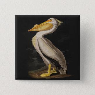 Audubon White Pelican Print Pinback Button