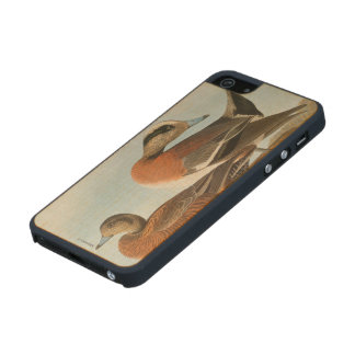 Audubon: Wigeon Carved® Maple iPhone 5 Case