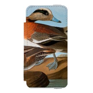 Audubon: Wigeon iPhone SE/5/5s Wallet Case