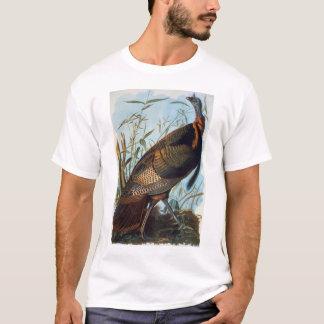 Audubon: Wild Turkey T-Shirt