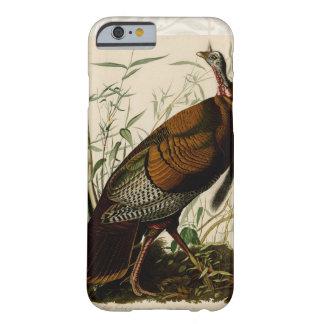 Audubon Wild Turkey Vintage Birds of America Barely There iPhone 6 Case